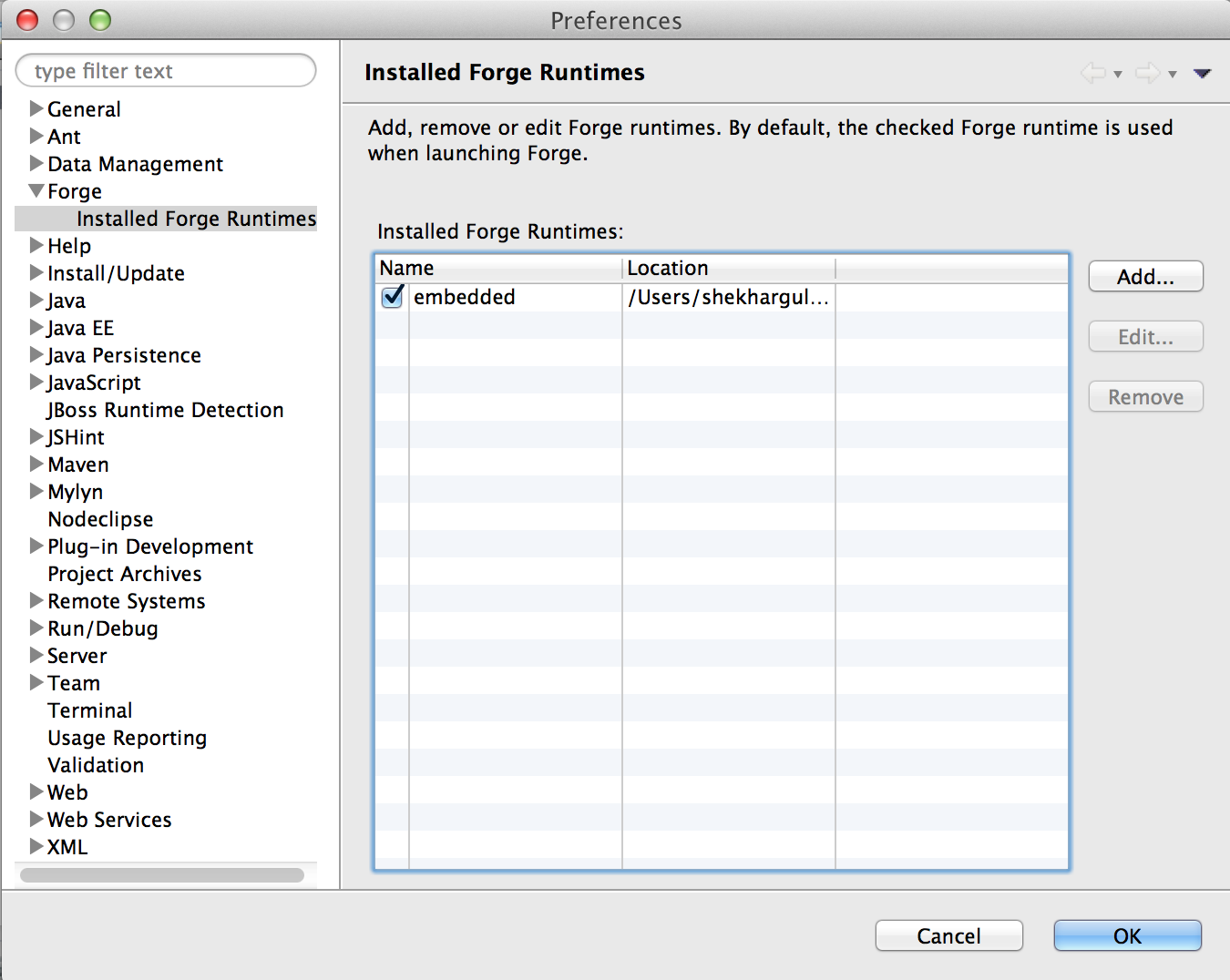 Installed Forge Runtimes