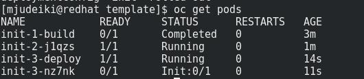 init build
