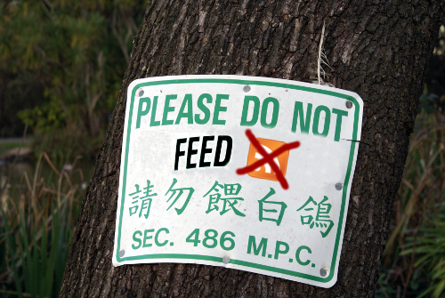 Please do not feed picture