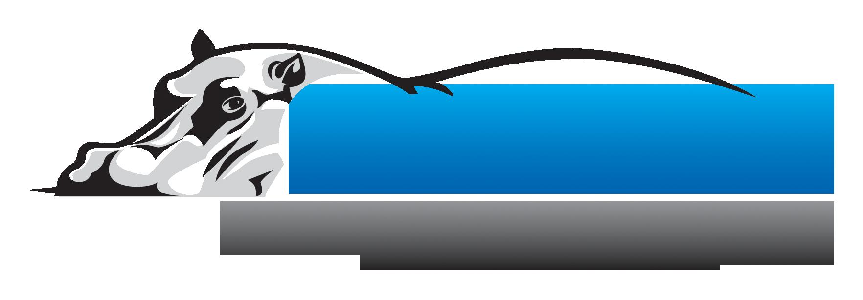 logo: Crunchy