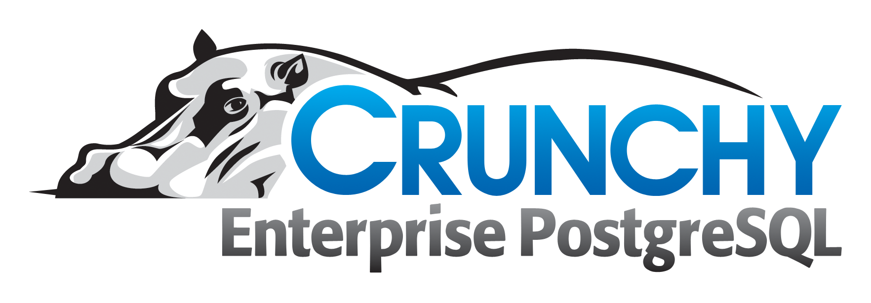 logo: Crunchy Data Solutions