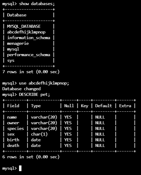 l3_mysql_restored_database_data